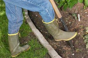 Cómo ajustar el suelo pH