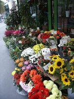 Las mejores Florerías en Brooklyn