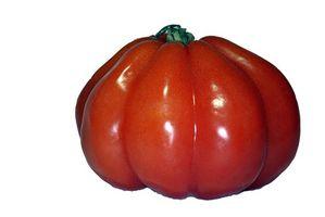¿Cómo elegir las semillas de tomate Heirloom
