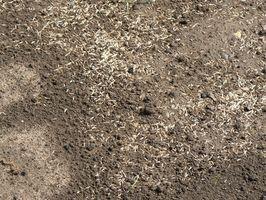 Análisis de DRX de plomo en suelo