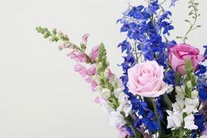 Cómo mantener las flores frescas para arreglos florales