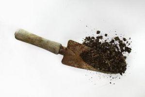 Cómo determinar el nitrógeno en las muestras de suelo