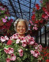 Cómo colgar cestas de flores musgo