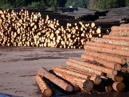 ¿Cómo construir una de madera utilizando árboles de la casa?