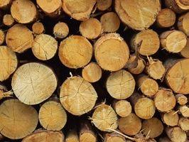 Cómo curar los troncos para una casa de troncos