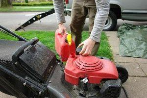¿Puede poner azufre en su patio para deshacerse de las pulgas?