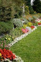 Uso de melaza en el jardín
