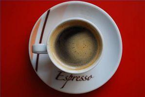 DeLonghi Espresso Maker instrucciones