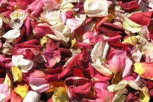 Centros de mesa con arena y pétalos de rosa