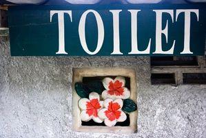 Ideas para como decorar cuando un inodoro es una ventana