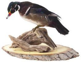 Ideas para monturas de pato de madera