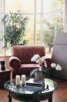 Cómo decorar tu salón con plantas y jardineras