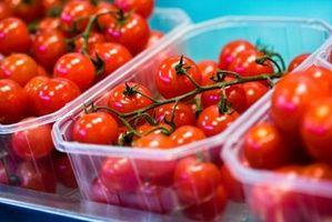 Cómo cultivar tomates Cherry para el mercado