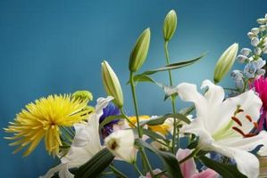 Cómo llegar capullos abiertos en flores frescas