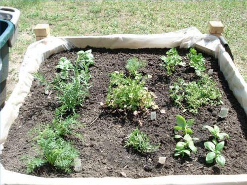 Cómo cultivar un jardín de contenedores para hierbas