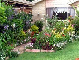 Planes de pequeño patio jardín