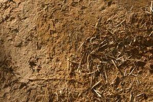 Cómo hacer crecer pasto en polvo de arcilla