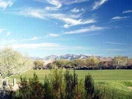 Cómo hacer crecer pasto en Arizona