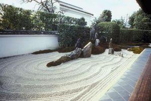 Cómo hacer crecer los Jardines Zen más rápido