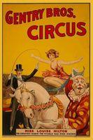 Ideas de decoración para un tema de circo