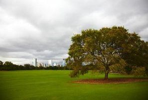Método científico de la hierba creciente