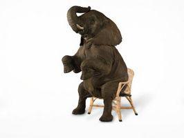 Cómo hacer un elefante falso para el jardín