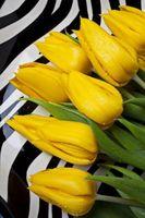 Cómo decorar con negro, blanco y amarillo