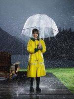 Acerca de la prevención de la lluvia ácida