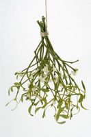 Arreglos de flores secas con flores silvestres