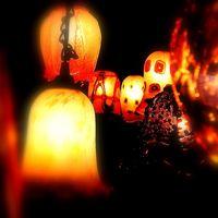 Estilos de la cortina de la lámpara
