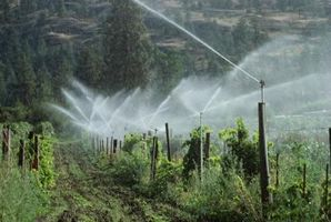 Presión de riego jardín