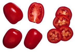 Deshidratación de tomate de plantas enfermas