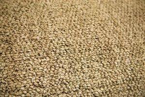Los mejores tipos de alfombra residencial