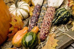 Ideas de plantador de la ventana en el otoño