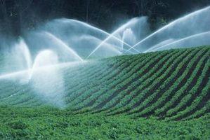 Cómo instalar un sistema de riego residencial