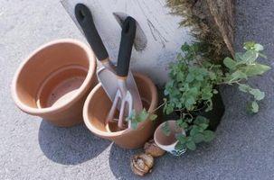 Cómo crear arte de Terra Cotta jardín