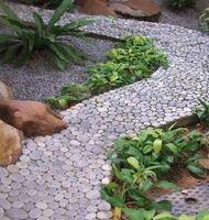 Utilizado para jardines de rocas
