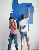 El mejor tipo de pintura para la pintura de la pared