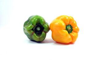 ¿Cuál es el mejor macetas de verduras?