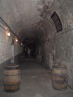 Nuevas Ideas de diseño de sótano