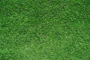 Alergias de Rye Grass