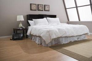 ¿Cómo obtener las chinches de cama en el techo