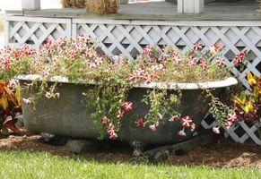 Cómo crear un jardín de contenedores fuera de una bañera