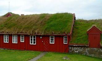 Cómo hacer crecer pasto en el techo