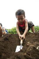 Cómo enseñar a los niños a la muestra de suelo