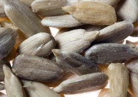 Empresas de semillas agrícolas orgánicos