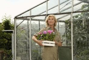 Cómo al jardín durante todo el año con un invernadero