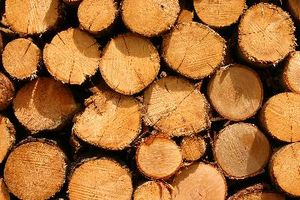 Costos - vs petróleo vs Gas vs la pelotilla de madera estufa de combustible