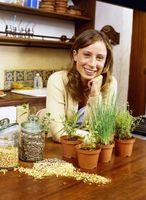 Cómo decorar una cocina de jardín
