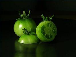 Sobre los productores de tomate hidropónico